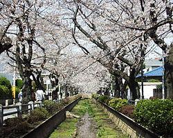 岡田准一の5億円豪邸の場所や住所はどこ!?世田谷!?家の写真や画像も